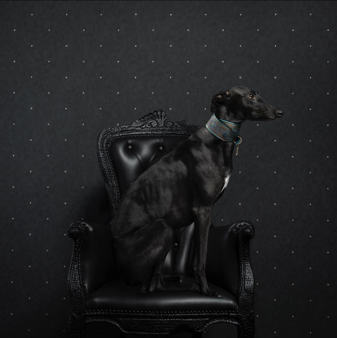 Neo Royal by Marcel Wanders - slider 4