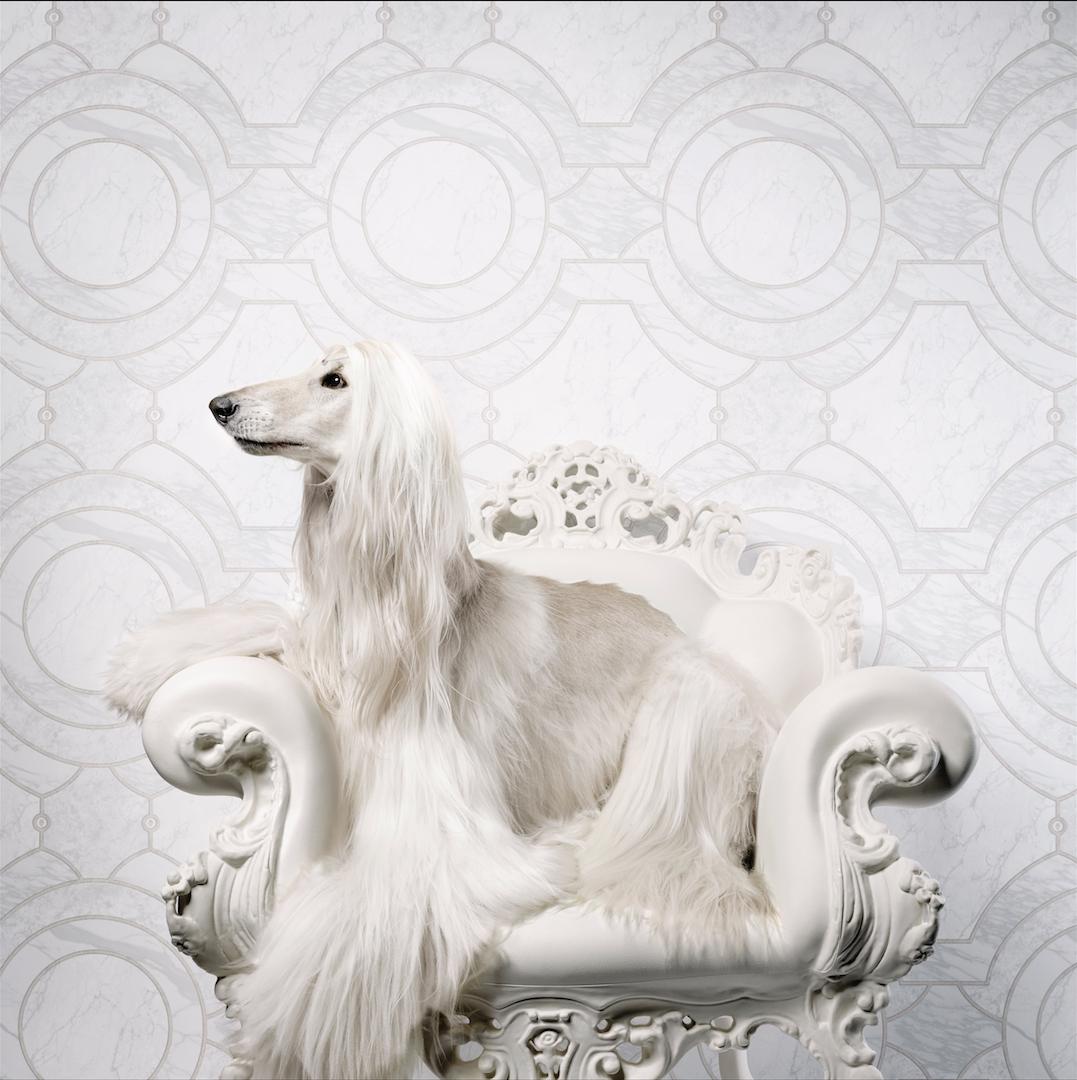 Neo Royal by Marcel Wanders - slider 8